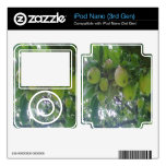 manzano skin para el iPod nano