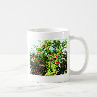 Manzano Tazas De Café