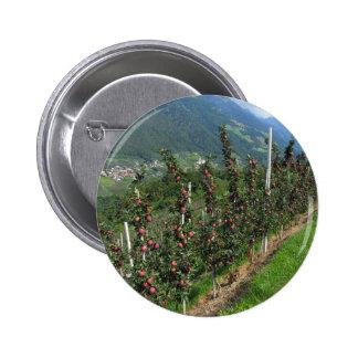 Manzanos rojos en un fondo de montañas pin redondo 5 cm