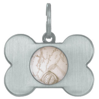 Map It Out Pet Tag