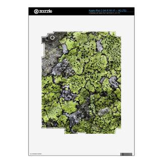Map Lichen iPad 3 Skin