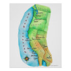 Map of American West Coast Poster