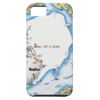 Map of Arctic iPhone 5 Cases
