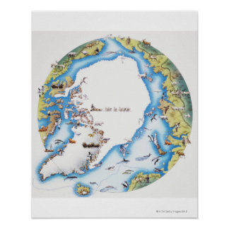 Map of Arctic Poster