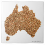 Map of Australia made of Glutinous Rice Large Square Tile