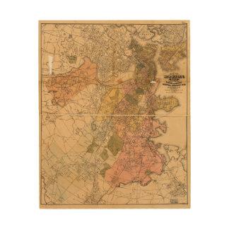 Map of Boston Massachusetts (1888) Wood Print