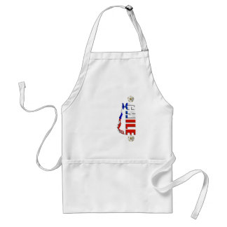 Map of Chile 2010 Chilean flag and soccer ball art Aprons