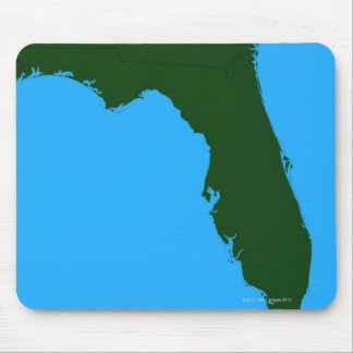 Map of Florida 2 Mouse Pad