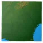 Map of Georgia 4 Large Square Tile