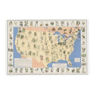 Map of Herbal Remedies laminated placemat