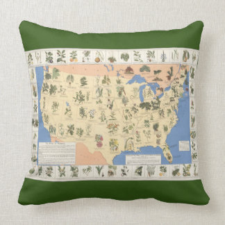 Map of Herbal Remedies square pillow