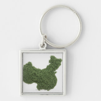 Map of Mainland China made of grass 2 Silver-Colored Square Keychain