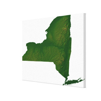 Map of New York State Canvas Print