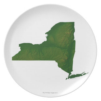 Map of New York State Dinner Plates