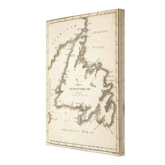 Map of Newfoundland Canvas Print