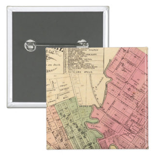 Map of Petaluma City 1877 Button