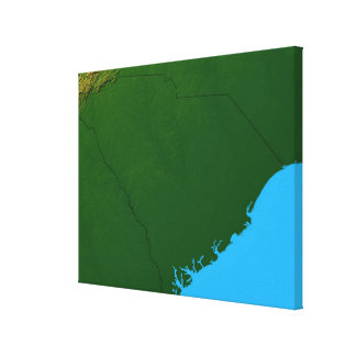 Map of South Carolina 2 Canvas Print