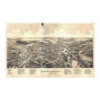 Map of Springville New York (1892) Canvas Print