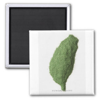 Map of Taiwan made of grass 2 Inch Square Magnet