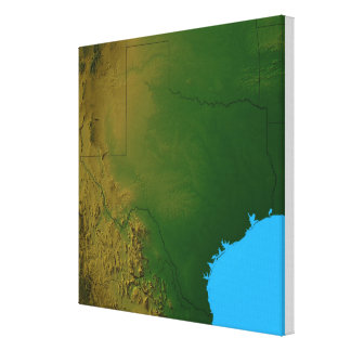 Map of Texas 3 Canvas Print
