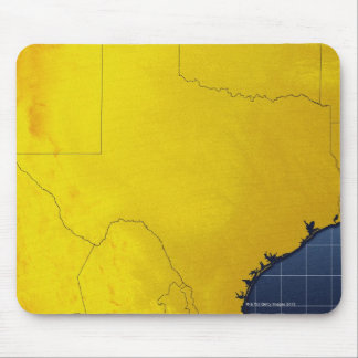Map of Texas 3 Mouse Pad