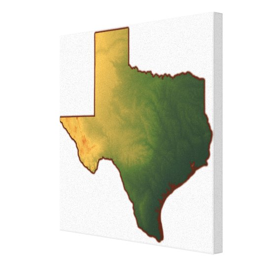 Map of Texas 4 Canvas Print