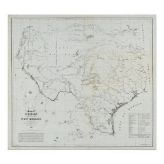 Map of Texas and part of New Mexico Poster