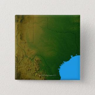 Map of Texas Button