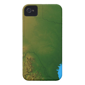Map of Texas iPhone 4 Case-Mate Case