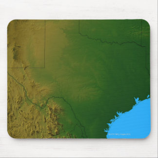 Map of Texas Mouse Pad