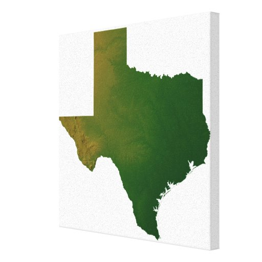 Map of Texas Stretched Canvas Print