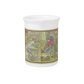 Map of the city of La Rochelle & Aunis France 1773 Pitcher