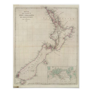 Map of the Colony of New Zealand Print
