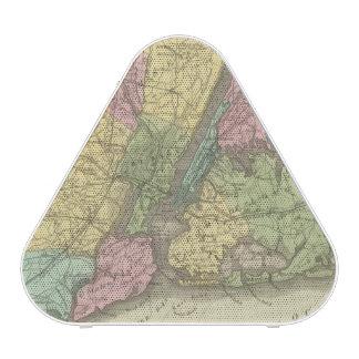 Map of the New York Speaker