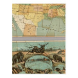 Map of the United States of America 2 Post Card