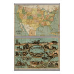Map of the United States of America 2 Print