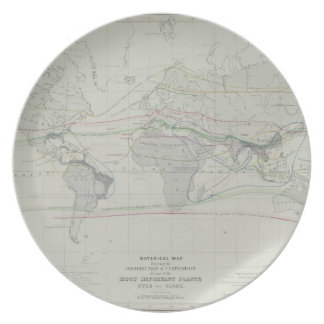 Map of the World 13 Plate