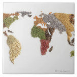 Map of world made of various seeds ceramic tiles