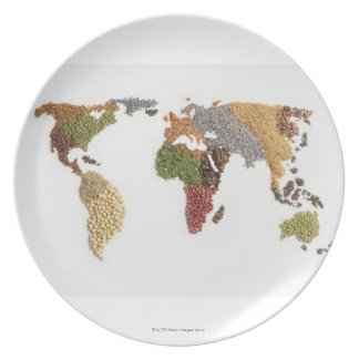 Map of world made of various seeds plates