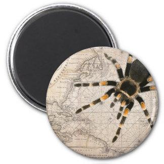 map spider 2 inch round magnet