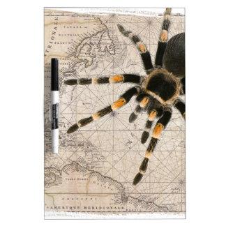 map spider dry erase board