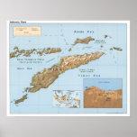 Mapa 1999 de Indonesia Timor Póster