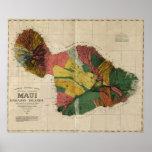 Mapa anticuario de la encuesta sobre Maui - Hawaii Poster