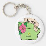Mapa bonito de Iowa Llavero