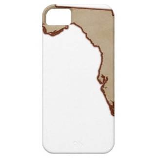 Mapa de alivio de la Florida Funda Para iPhone 5 Barely There