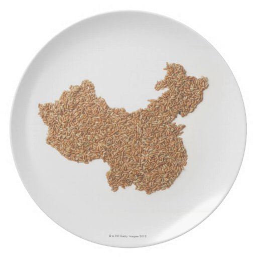 Mapa de China continental hecho del arroz pegajoso Plato Para Fiesta