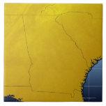 Mapa de Georgia 3 Azulejo Cuadrado Grande