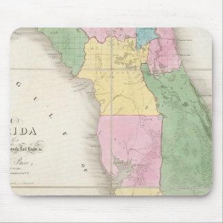 Mapa de la Florida 2 Tapete De Ratones