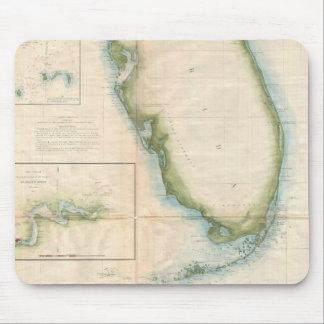 Mapa de la Florida del vintage Alfombrillas De Ratones