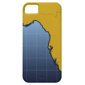 Mapa de la Florida iPhone 5 Funda